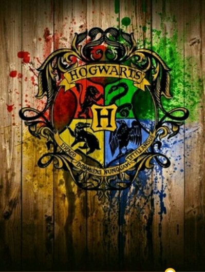 Fanfic / Fanfiction As lições de um sonserino - Capítulo 4 - Captulo-4 Hogwarts