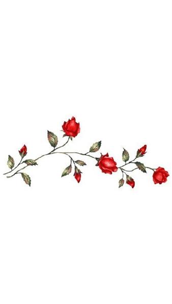 Fanfic / Fanfiction Chuva - Capítulo 12 - Rosas Vermelhas