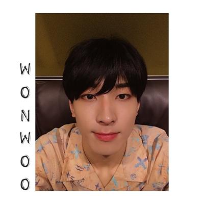 Fanfic / Fanfiction Falling In Love (Coletânea Imagines Seventeen) - Capítulo 5 - Você é como uma série, WonWoo... (Day 05 WonWoo)