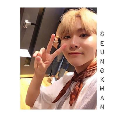 Fanfic / Fanfiction Falling In Love (Coletânea Imagines Seventeen) - Capítulo 10 - Está com ciúmes, SeungKwan? (Day 10 SeungKwan)