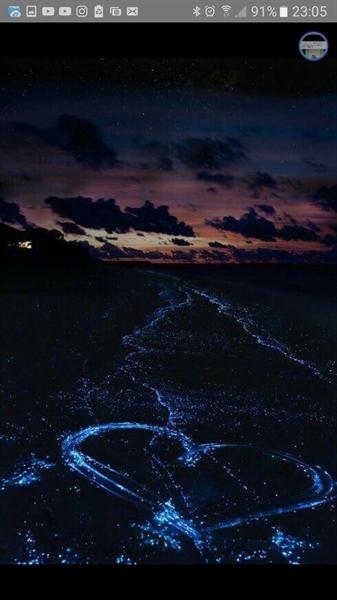 Fanfic / Fanfiction I love you (imagine jimin) - Capítulo 10 - AVISO...