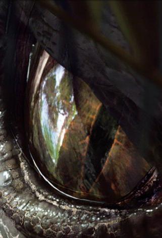 Fanfic / Fanfiction Jurassic World - Rapter - Capítulo 19 - Feioso?