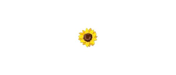 Fanfic / Fanfiction Like a Flower (Helianthus) - Capítulo 1 - 001