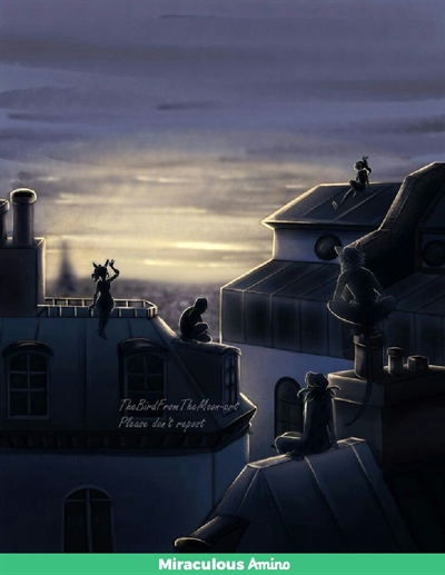 Fanfic / Fanfiction Miraculous Ladybug: A Vida Dos Novos Heróis - Capítulo 6 - Um Passeio Noturno