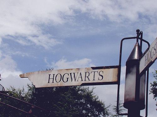 Fanfic / Fanfiction Redes Socias Harry Potter - Capítulo 40 - Instagram- Hermione Granger
