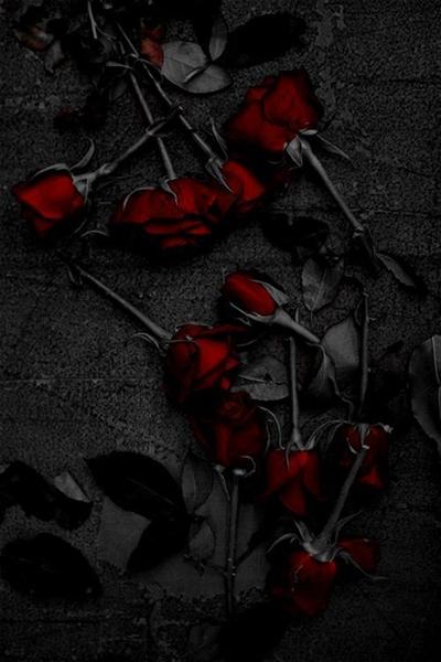 Fanfic / Fanfiction Rosas e espinhos. - Capítulo 1 - Apenas espinhos.