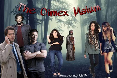 Fanfic / Fanfiction The Cimex Malum, a Supernatural history - Capítulo 3 - Apenas algumas ideias