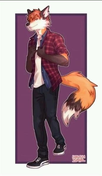Fanfic / Fanfiction Uma vida de lobo (Furry) - Capítulo 5 - O novo assistente !