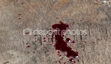 Fanfic / Fanfiction Blood Moore ( Institute Iredalle ) - Capítulo 4 - II. Alucinações ( Parte II)