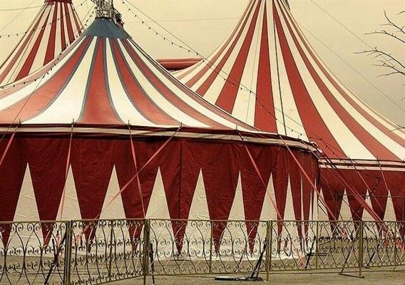 Fanfic / Fanfiction Janet, the Clown - Capítulo 1 - Infância no circo