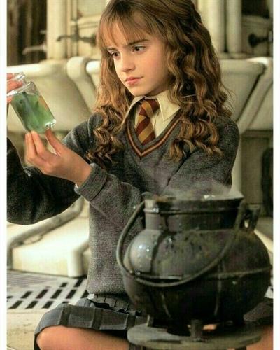 Fanfic / Fanfiction My aventure in Hogwarts - Capítulo 2 - Seleção das Casas
