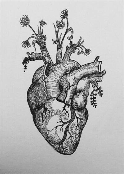 Fanfic / Fanfiction Pulse - Capítulo 2 - Heart beat