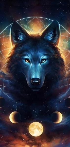 Fanfic / Fanfiction Meu lobo possessivo(imagine jungkook) - Capítulo 3 - Onde eu estou??