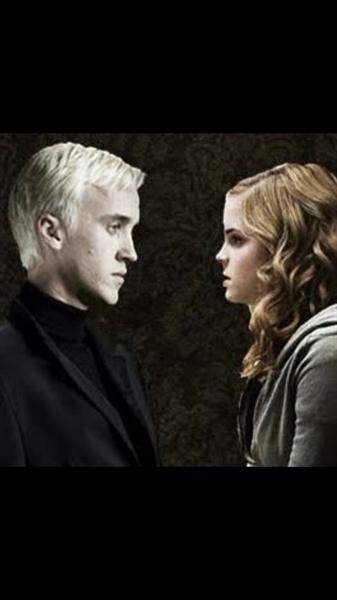 Fanfic / Fanfiction Minha Malfoy - Capítulo 2 - A comunal em conjunto