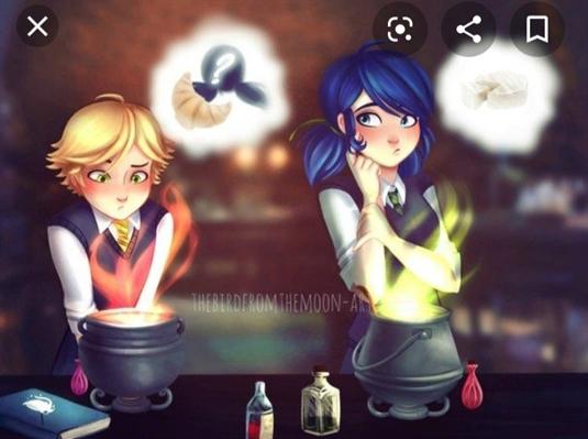 Fanfic / Fanfiction Miraculous em hogwarts - Capítulo 2 - As irmãs