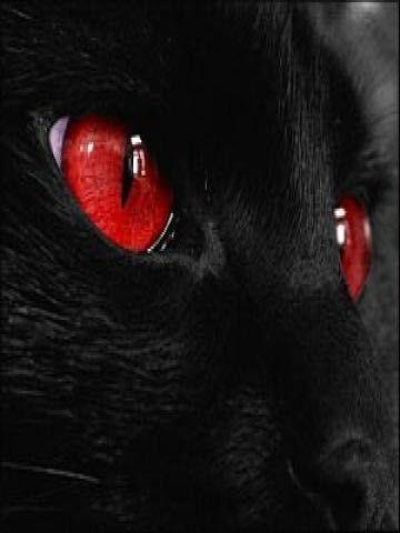 Fanfic / Fanfiction Moral da história - Capítulo 1 - Olhos de rubi