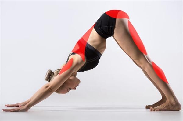 Fanfic / Fanfiction Yoga (Sexo) - Capítulo 1 - Yoga