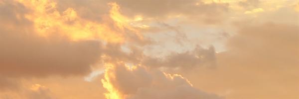 Fanfic / Fanfiction Orelhas bonitinhas - Capítulo 1 - Único.