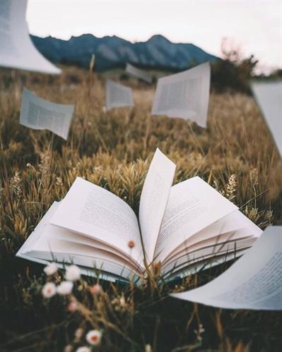 Fanfic / Fanfiction Coffee Shop ☕︎︎ - Capítulo 2 - Biblioteca