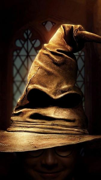 Fanfic / Fanfiction A Falsa Bruxa - Capítulo 8 - O Chapéu Seletor