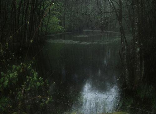 Fanfic / Fanfiction Caminho de Narciso - Capítulo 3 - - Capítulo 2 -