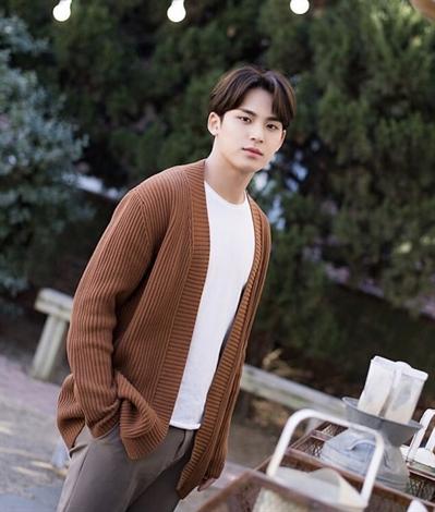 Fanfic / Fanfiction First Love - Kim Mingyu (SEVENTEEN) - Capítulo 5 - Apenas começando!