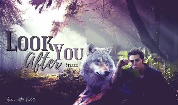 Fanfic / Fanfiction Look After You - Sterek - Capítulo 18 - Capítulo 15