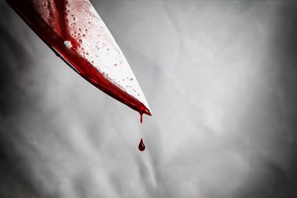Fanfic / Fanfiction Golpe Errado - Capítulo 7 - Sangue derramado.