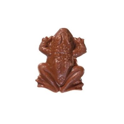 Fanfic / Fanfiction Harry potter- blackpink interativa - Capítulo 65 - Quem roubou meu sapo de chocolate?!