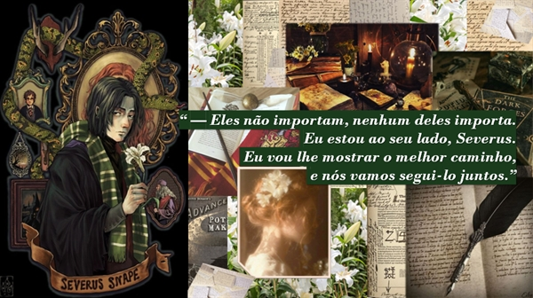 Fanfic / Fanfiction Através do vidro - Capítulo 8 - Severus Snape - Parte III