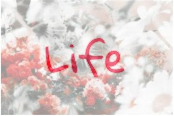 Fanfic / Fanfiction Life - Capítulo 14 - Capítulo 14
