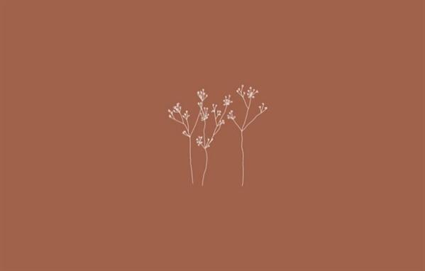 Fanfic / Fanfiction Flowers - JiKook One Shot - Capítulo 1 - Flowers