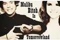 História: Malibu Bitch In Tomorrowland