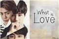 História: What Is Love