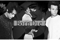 História: Fanfic Larry - Born to Die