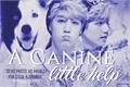 História: A canine little help (Imagine Mark - GOT7)