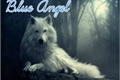 História: Blue Angel