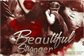 História: Beautiful Stranger (Imagine Jimin - BTS)