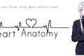 História: Heart Anatomy
