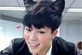 História: My Kitty - Imagine Jimin - Omegaverse