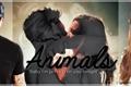 História: Animals