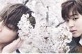 História: Jeon JungKook Me Ama ?!