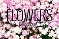 História: Flowers - Chanbaek
