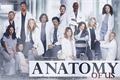 História: Anatomy of Us