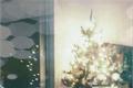 História: Got you under my Christmas tree