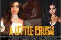 História: A Little Crush  ( Camren )