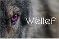 História: Wellef