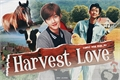 História: Harvest Love
