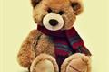 História: My little teddy bear -chensung-