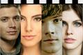 História: Winchester Love